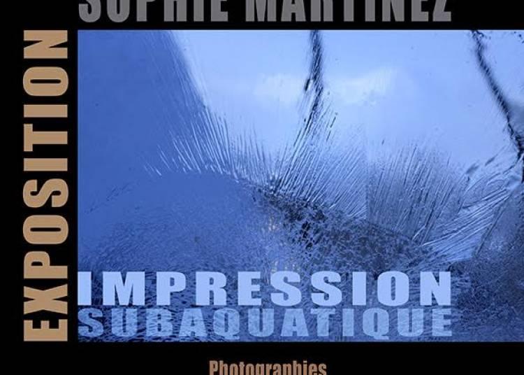 Exposition Impression subaquatique � Grenoble