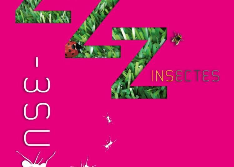 ZZZ'insectes � Paris 12�me