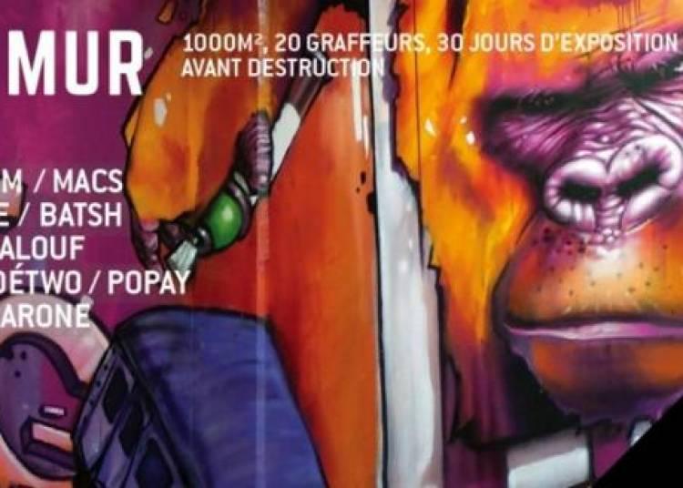 Face au mur - Exposition Graffiti � Paris 12�me