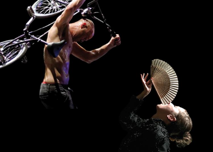 Flat/grand délit (création 2014) - Cristina (création 2015) à Avignon