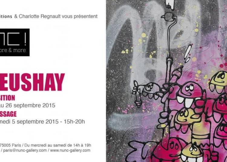 Solo Show Meushay � Grenoble