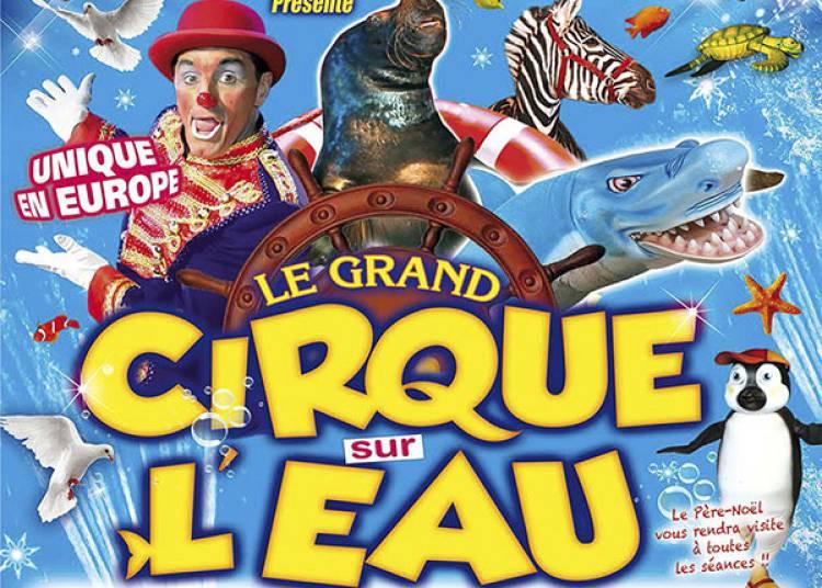 Grand Cirque De Noel De Marseille