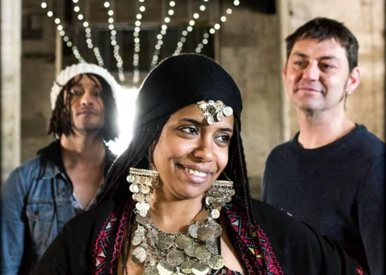 Oum Kalsoum Meets Pink Floyd � Paris 5�me