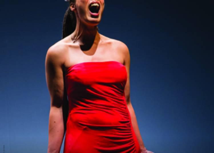Neige Noire, Variations sur la vie de Billie Holiday � Paris 6�me