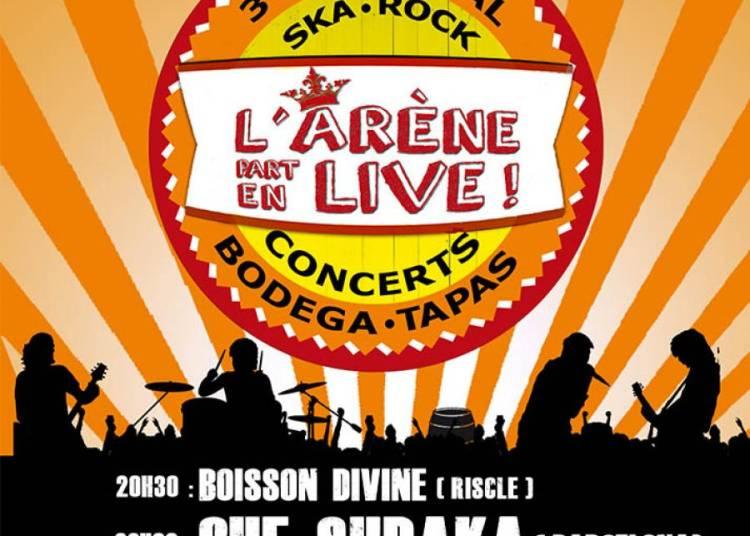 Festival L'ar�ne part en live 2015