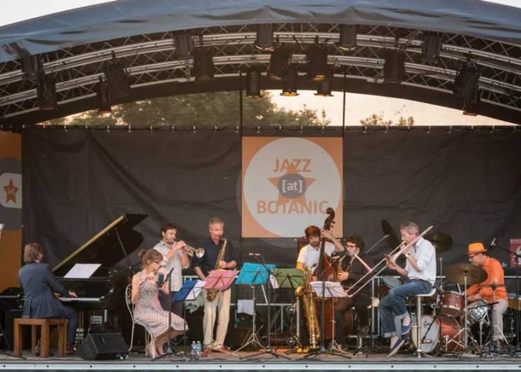 Le Petit Orchestre du Dimanche � Bordeaux