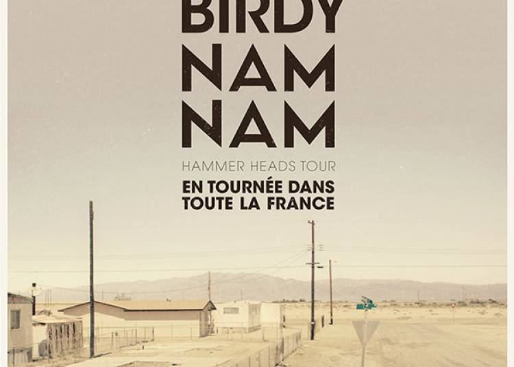 Birdy Nam Nam � Caen