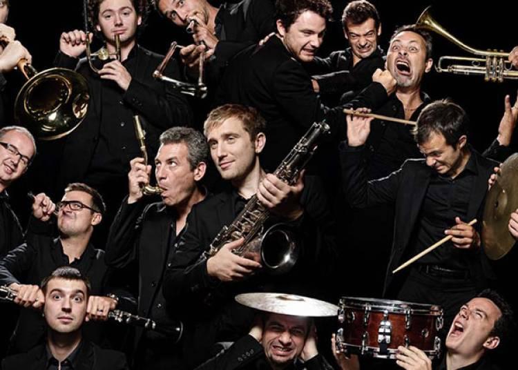 Le Carnaval Jazz Des Animaux � Aix en Provence