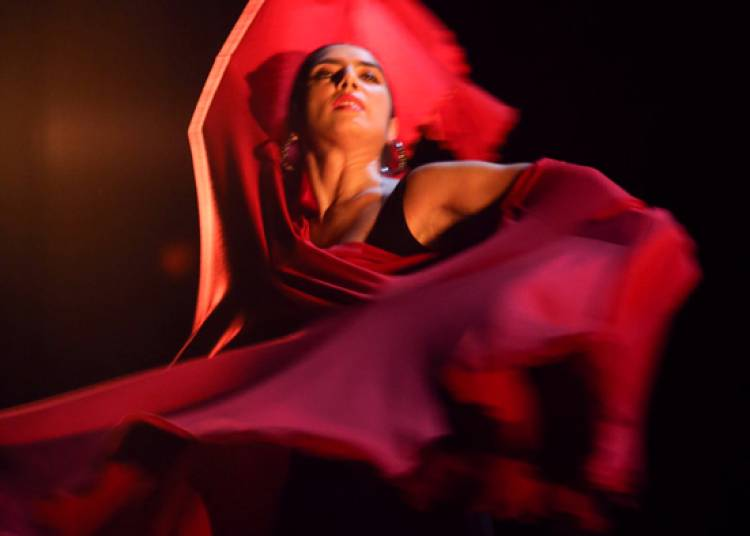 Spectacle flamenco Sevilla - Cadiz � Paris 5�me