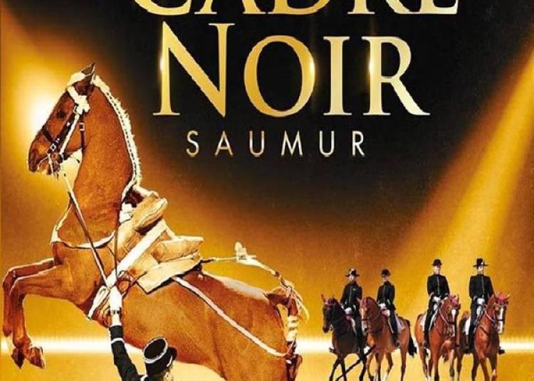 Cadre Noir De Saumur � Rouen