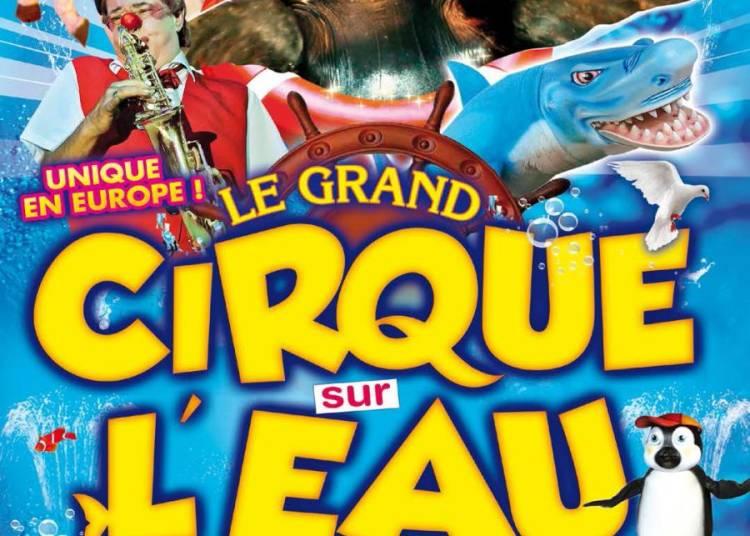 Grand Cirque sur l'eau � Marseille