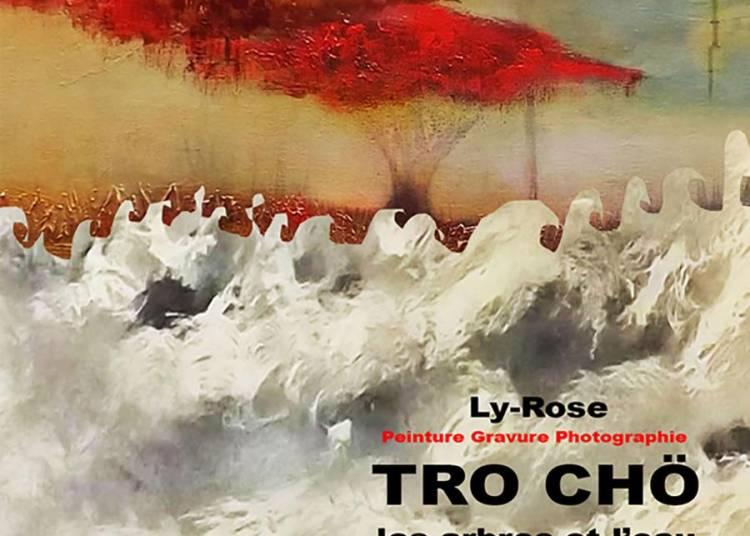 TRO CH� les arbres et l'eau, Peinture Gravure de Ly-Rose � Paris 20�me
