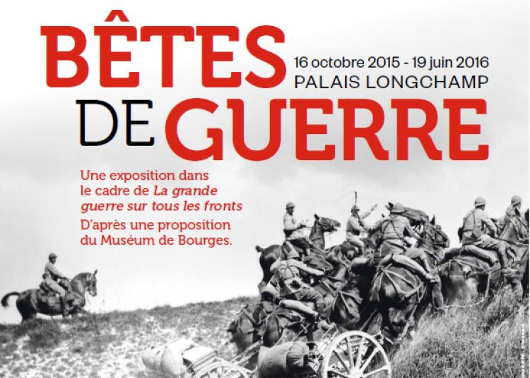 B�tes de guerre � Marseille