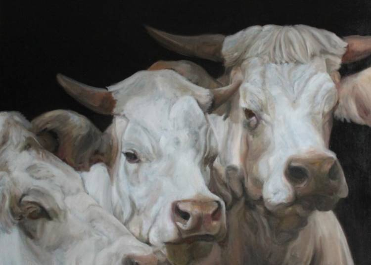 Capton, peintre animalier � Ancenis