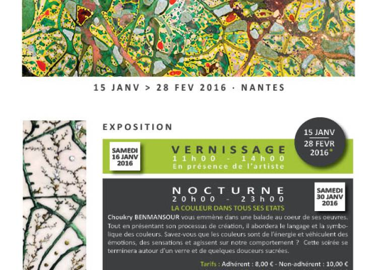 Expo n�14 Choukry Benmansour � Nantes