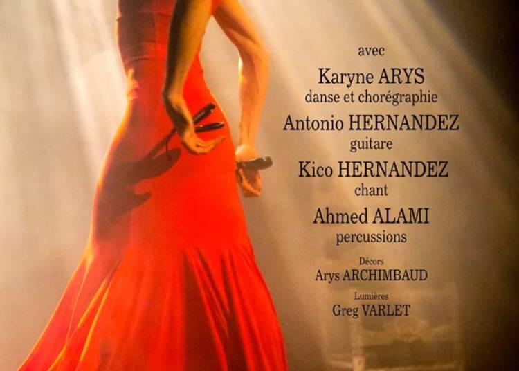 Temps Flamenco � Bordeaux