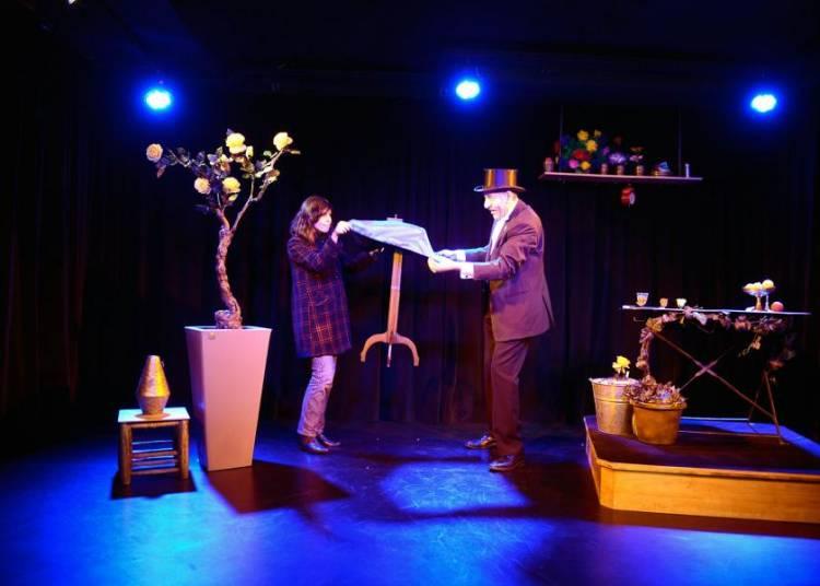 Spectacle de magie familial � Nantes