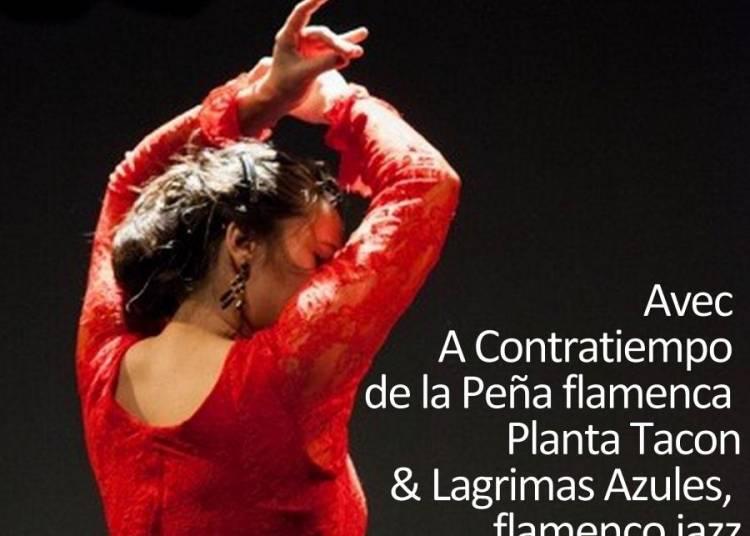 Soir�e flamenco & tapas � Haute Goulaine