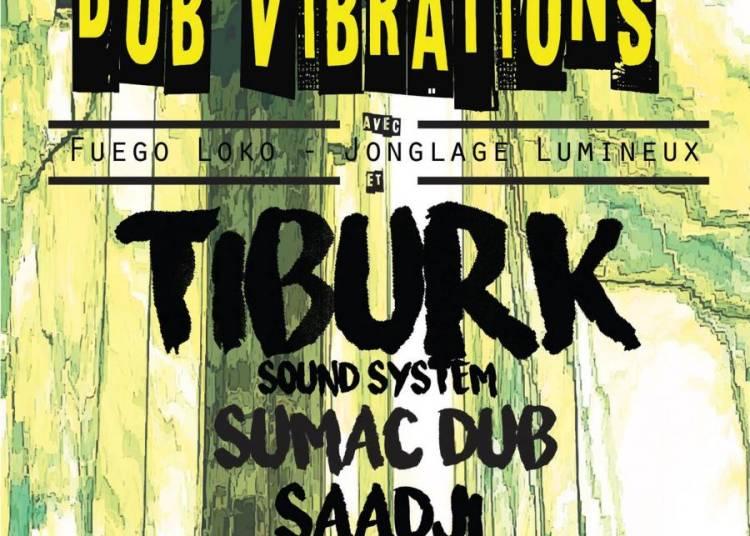 Dub Vibrations par l'association Roots N Culture � Grenoble