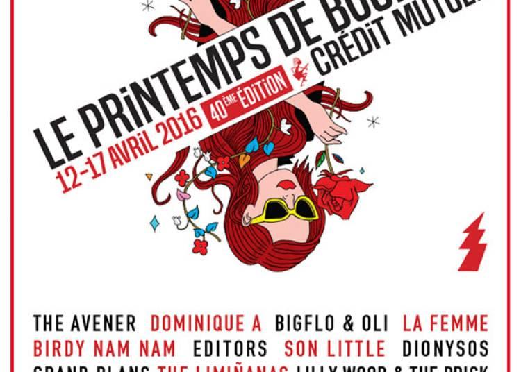 Dionysos et Radio Elvis à Bourges