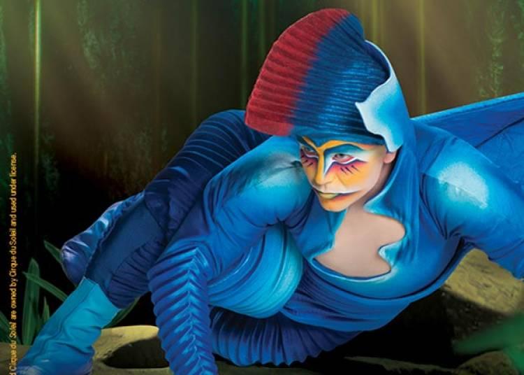 Cirque Du Soleil � Paris 12�me