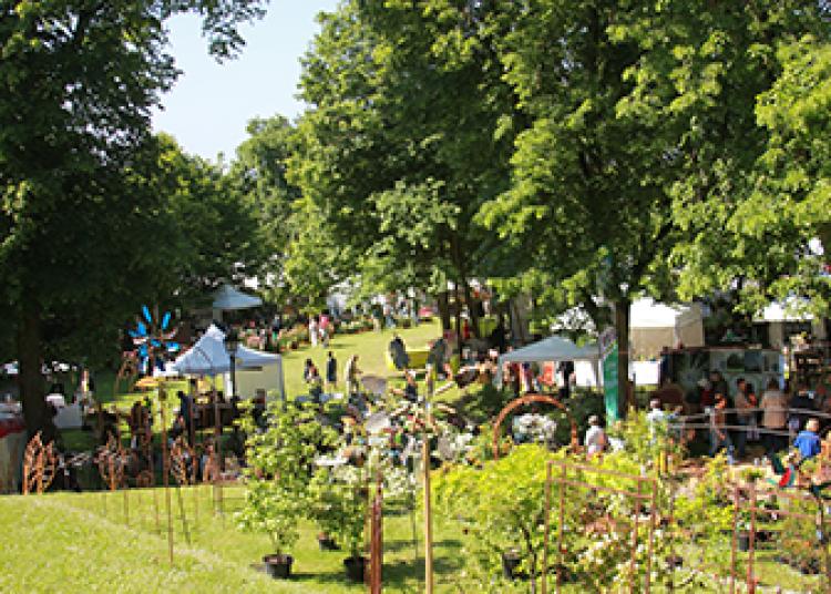 Les irisiades, la F�te des Fleurs, des Plantes et des Arts du Ch�teau d'Auvers-sur-Oise 2016