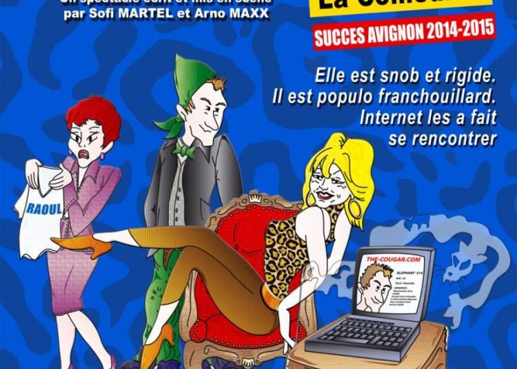 The Cougar. Com � Avignon