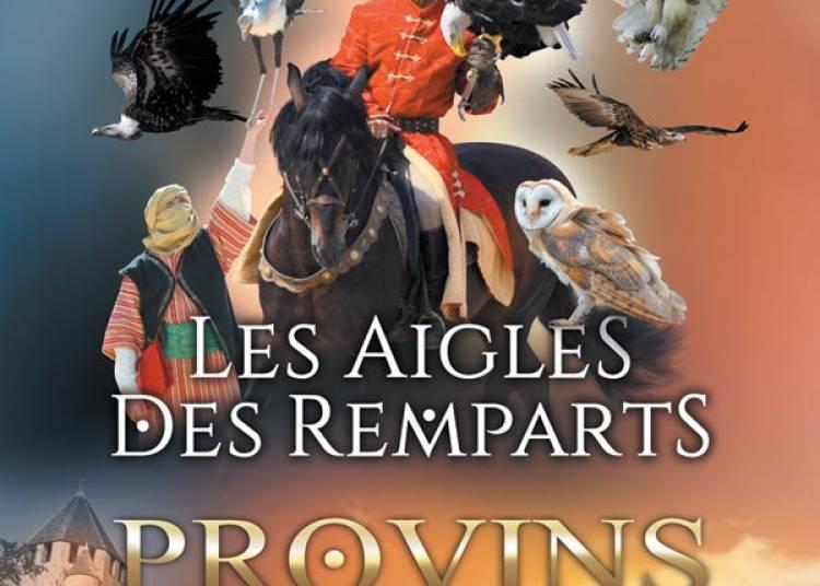 Les Aigles Des Remparts � Provins