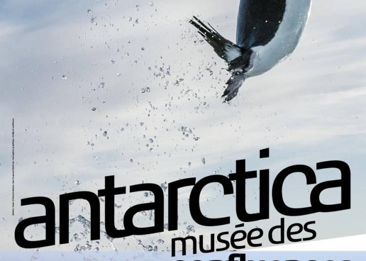 Antarctica � Lyon