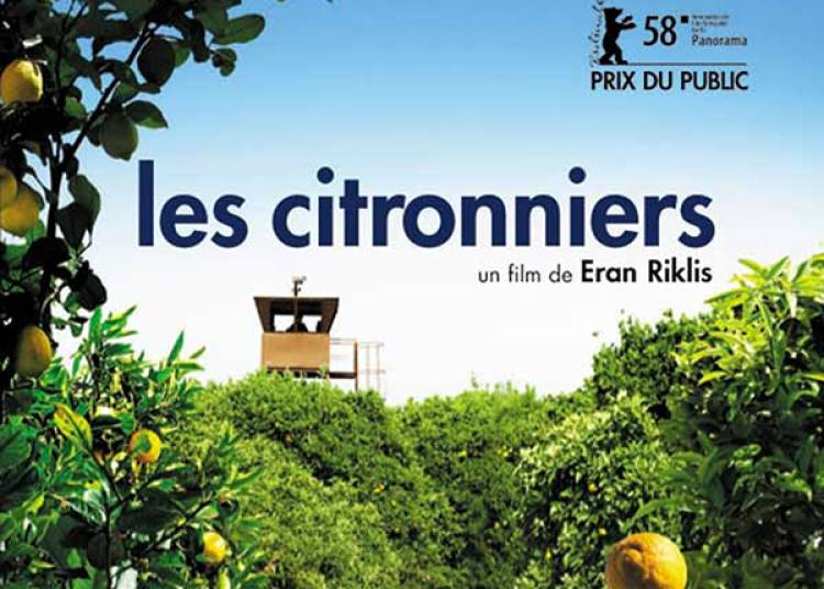 Les Citronniers � Paris 5�me