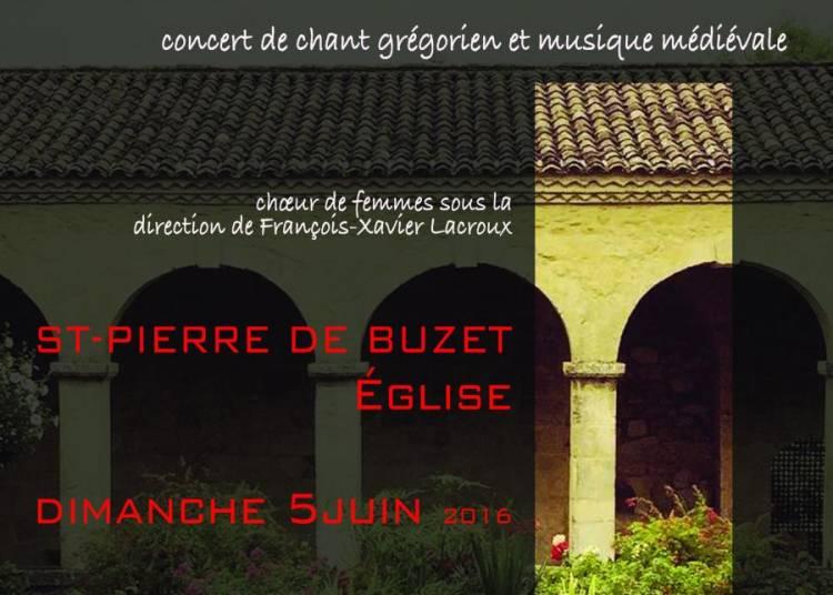 Une Pentec�te : concert de gr�gorien � Saint Pierre de Buzet