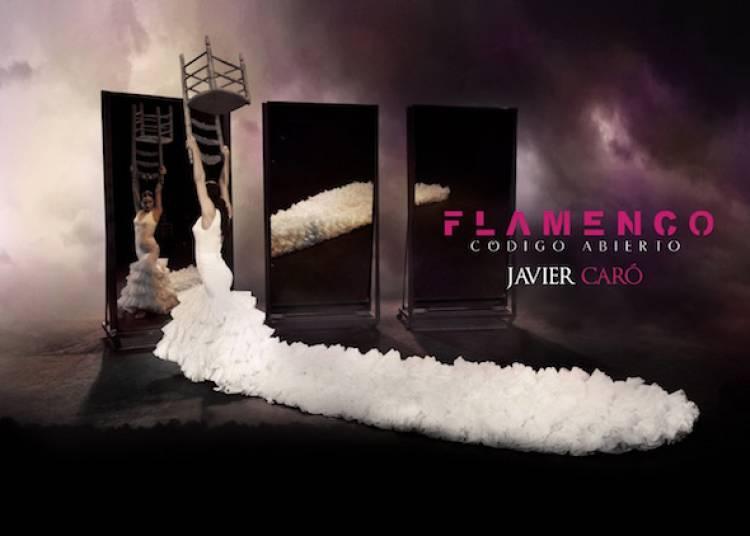 Flamenco codigo abierto � Mont de Marsan