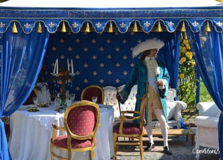 Pique nique costum� au Ch�teau � La Ferte saint Aubin
