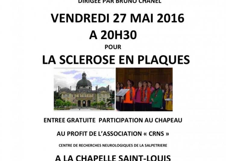 Gospel Au Profit De La Sclerose En Plaques � Paris 13�me