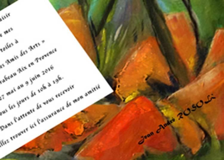 Peinture de Rosoli � Aix en Provence