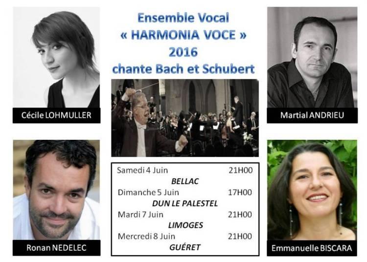 Bach Et Schubert � Limoges