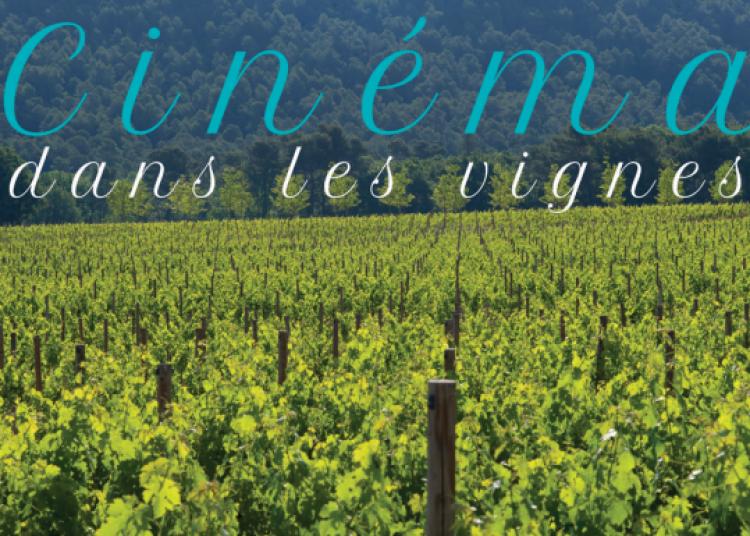 Cin�ma dans les vignes 2016