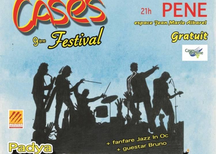 Festival Cap � Cases 2016