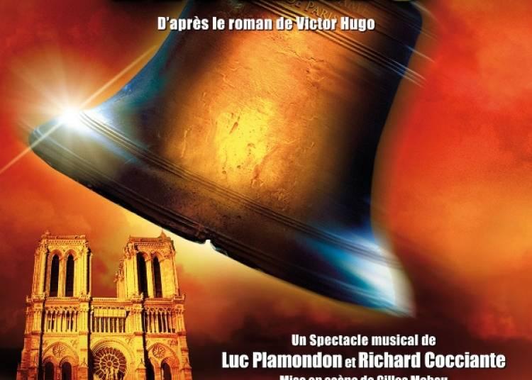 Notre Dame de Paris � Orl�ans