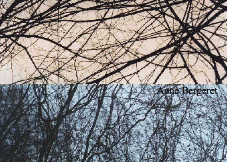 Anne Bergeret : TRAMES � Grenoble