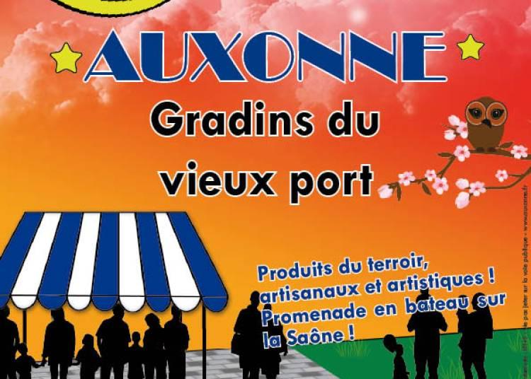 March�s nocturnes d'Auxonne 2016