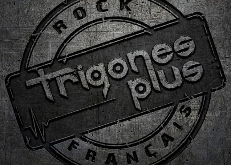 Trigones Plus � Lyon