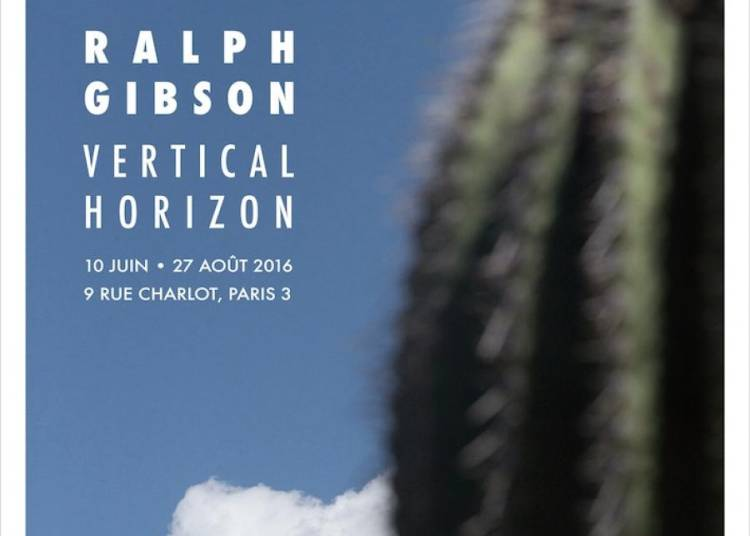 Vertical Horizon/in�dits Couleur De Ralph Gibson � Paris 3�me