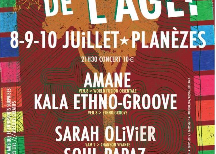 Festival les musicales de l'Agly 2016