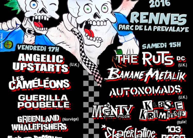 Gu�rilla Poubelle, Banane Metalik et X Syndicate � Rennes