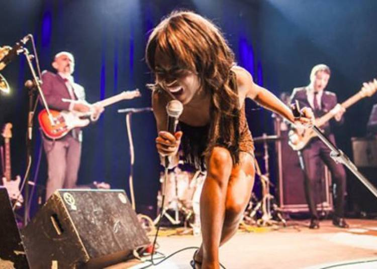 The Excitements � Montpellier