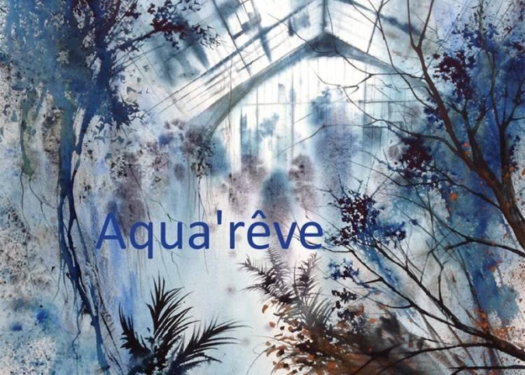 Aqua'R�ve � Strasbourg
