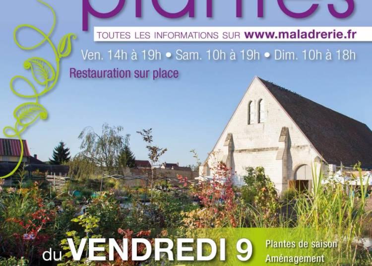 Journ�es des Plantes de Beauvais