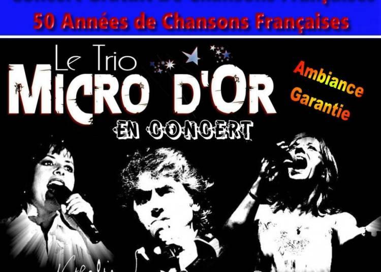 Concert dansant gratuit Trio Micro D'or aout 2016 � Loupian
