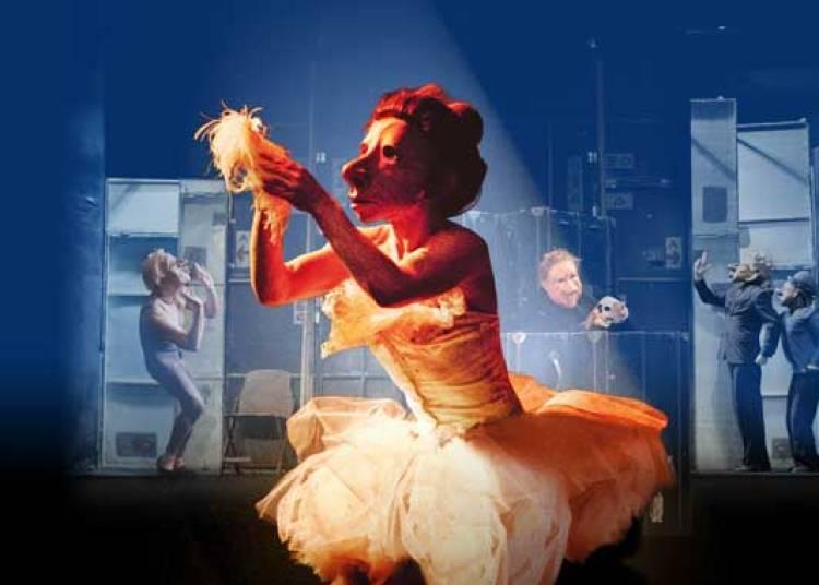 Teatro Delusio / Familie Fl�z � Saint Malo